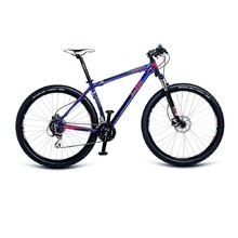 4EVER Graffiti 29'' - Mountainbike - Modell 2017 - blank blau