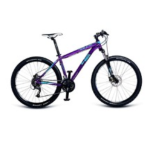 4EVER Sceleton 27,5'' Mountainbike - Modell 2017 - lila
