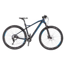 4EVER Inexxis 1 29'' - Mountainbike Modell 2019